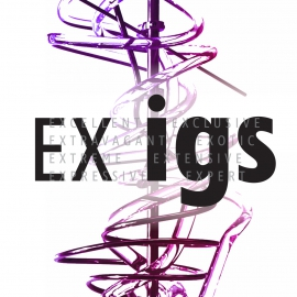 EXHIBITION EX IGS